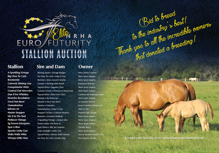 TAB_ELITE_STALLION_AUCTION_low